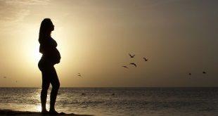 מחיר צילום הריון