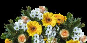 משלוח פרחים בחיפה